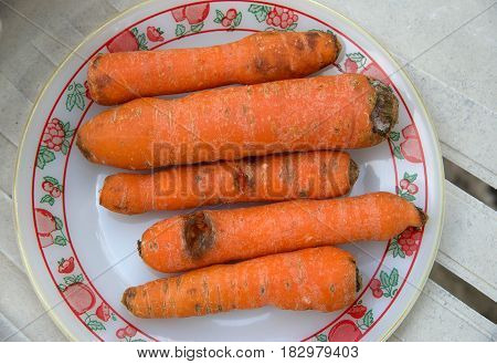 Carrots on a plate purchased on a market in Portugal