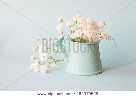 Delicate bouquet gypsophila in blue pot on blue background. Copy space for text.