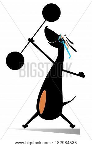 Strong dog with weight isolated. Cartoon dachshund lifts a heavy weight