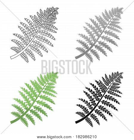 Prehistoric plant icon in cartoon design isolated on white background. Dinosaurs and prehistoric symbol stock vector illustration.