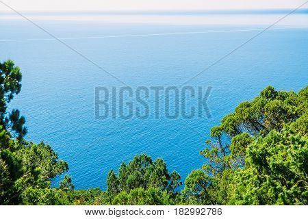 Blue sea, cliff and trees in the Mediterranean. Sunny day on blue ocean