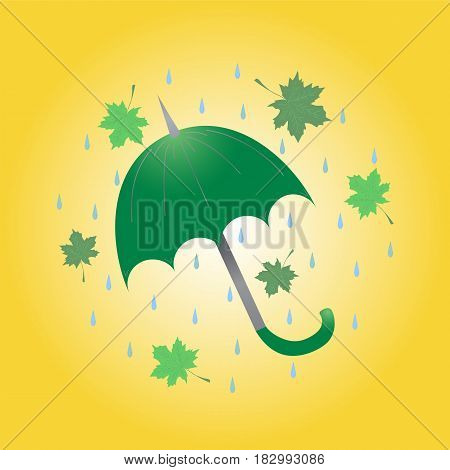 Hand Drawn Green Umbrella Maple Leaves and Drops Arranged in a Circle. Flat Style Vector Illustration.