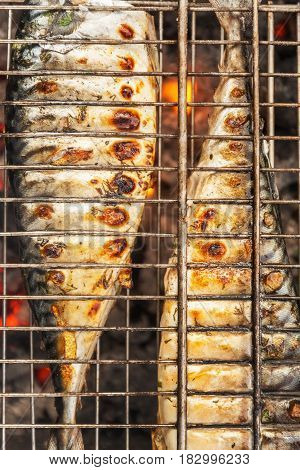 Roasted Carcass Fish Mackerel Cooked On The Grill, Top View, Close-up