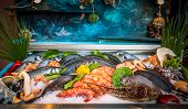 Fresh seafood and fishes lying on ice in the showcase. Rethymno on Crete island, Greece. poster