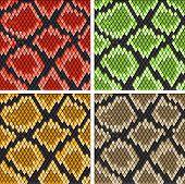 Set of snake skin patterns for design or ornate poster