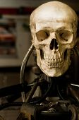 Human skull on robot body close up poster