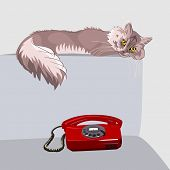 lilac fluffy tabby cat with yellow eyes lying on the couch in front of a red phone poster