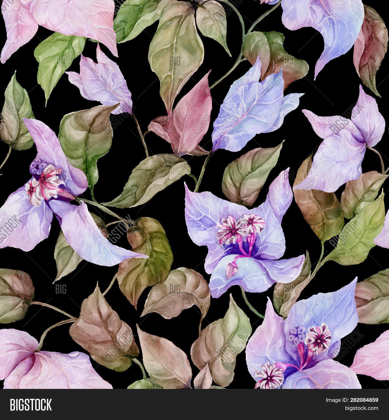 Beautiful Image Photo Free Trial Bigstock