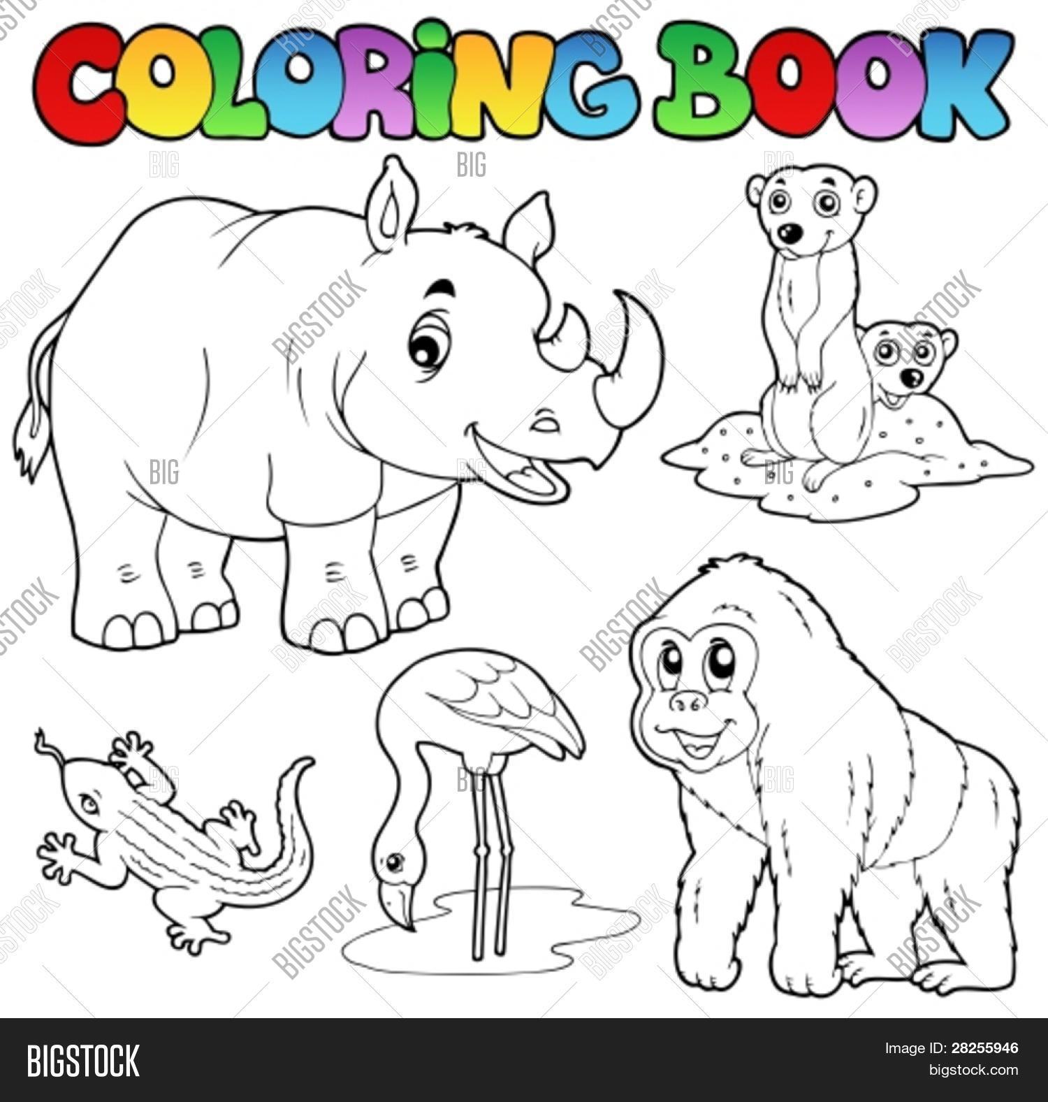 Vector y foto Animales De Zooló (prueba gratis) | Bigstock