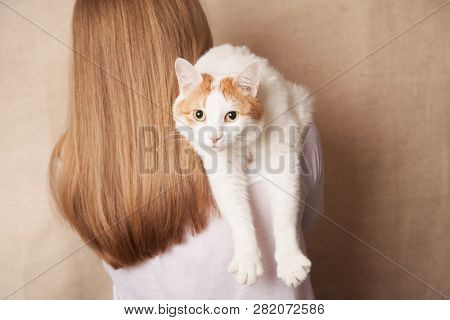 Gentle White Cat On A Womans Shoulder. White Cat On The Shoulder Of A Blonde On A Beige Background.