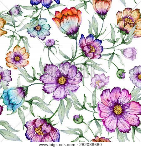 Beautiful Colorful Cosmos Flowers With Leaves On White Background. Seamless Floral Pattern.  Waterco