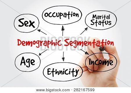 Hand Writing With Marker Demographic Segmentation Mind Map Flowchart Social Business Concept For Pre