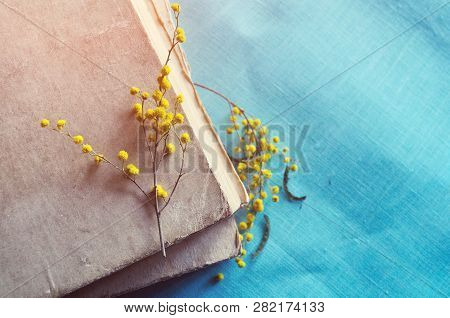 Spring vintage composition - stack of old worn book with small spring mimosa branches lit by sunlight. Selective focus at the mimosa lying on the hardcover. Spring background