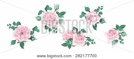 Watercolor Floral Set, Vector Roses. Wedding Card Design In Rustic Style. Vintage Floral Bouquet Wit