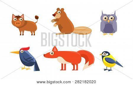 Collection Of Wild Forest Animals, Boar, Beaver, Owl, Owlet, Woodpecker, Fox, Tit Bird Vector Illust