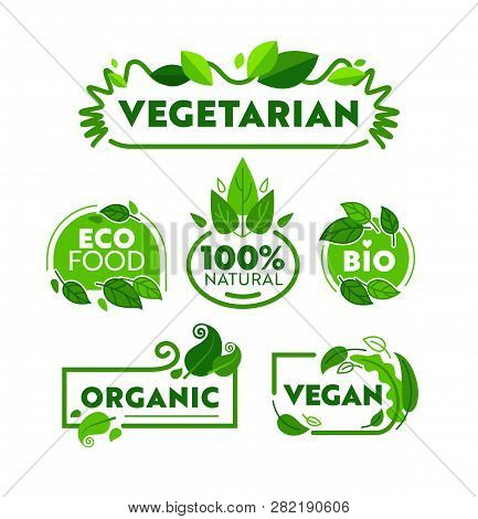 Green Eco Vegetarian Organic Food Icon Banner Set. Vegan Bio Nature Shop Badge Collection For Ecolog