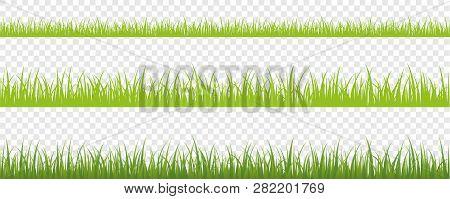 Green Grass Meadow Border Vector Pattern Isoladet Vector Illustration Eps10