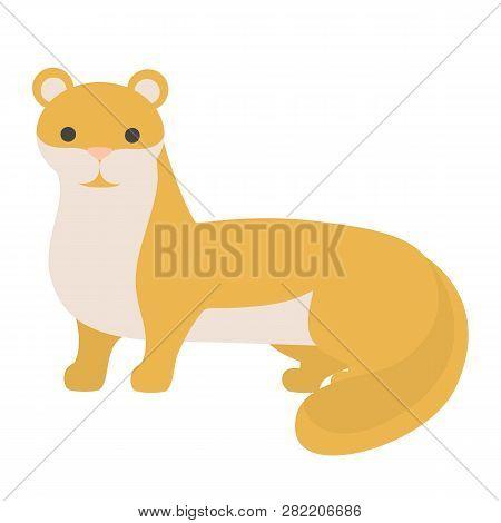 Ferret Animal. Domestic Polecat With Fluffy Fur