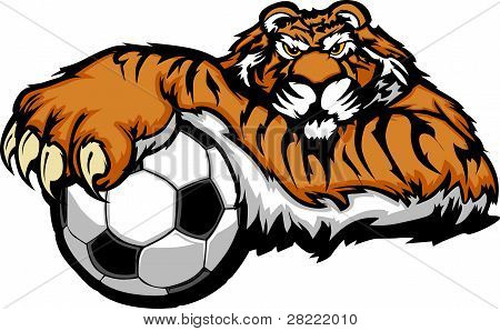 Tiger with Paws on a Soccer Ball Graphic Mascot Vector Image poster