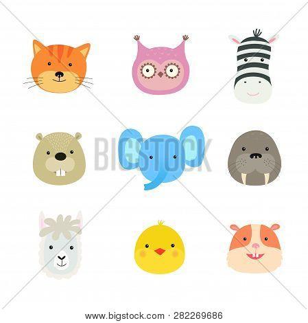 Cartoon Cute Animals For Baby Card And Invitation. Zebra, Elephant, Walrus, Owl, Beaver, Llama, Chic