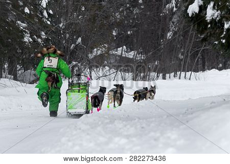 Grand Portage, Mn - January 29, 2019: Ryan Redington Leaves Mineral Center Checkpoint During The Joh