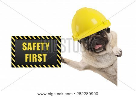 Frolic Smiling Pug Puppy Dog With Yellow Constructor Helmet, Holding Up Black And Yellow Safety Firs