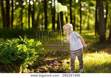 Cute Little Boy Catches Butterflies With Scoop-net On Sunny Meadow.study Of Nature. Young Naturalist