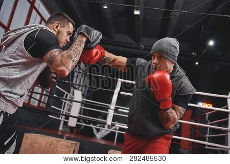 Right Hook To The Paw. Focused Athlete In Boxing Gloves Training On Boxing Paws While Standing In Bo