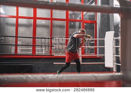 Hard Work On Boxing Ring. Muscular Tattooed Boxer In Sports Clothing Punching On Red Ring While Exer
