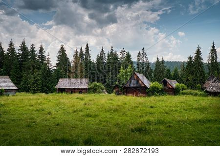 Old Log Cabin In The Forest..