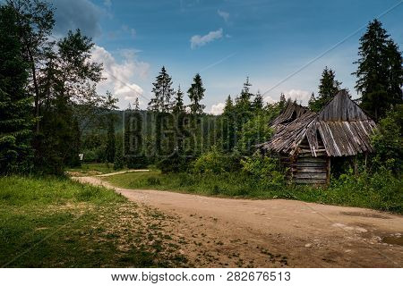 Old Log Cabin In The Forest Near Road..