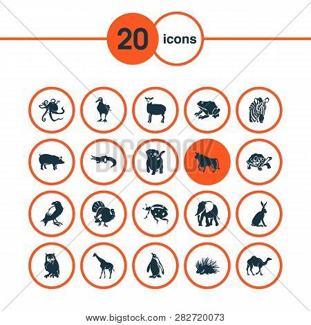 Fauna Icons Set With Pig, Hare, Porcupine And Other Trunked Animal Elements. Isolated Vector Illustr
