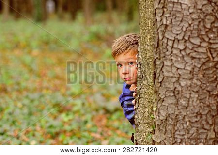 Transforming Fear Into Freedom. Little Boy Feel Nasty Fear To Be Lost In Wood. Little Boy Hide Behin