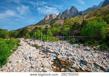 Landscape with stream and trees in Seoraksan National Park, South Korea