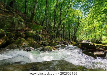 Forest Stream Among The Rocks. Beautiful Summer Scenery With Refreshing Rapid Flow. Logs And Branche