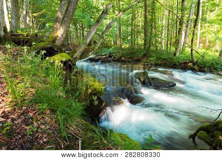Forest River Among The Rocks. Beautiful Summer Scenery With Refreshing Rapid Flow. Wonderful Nature