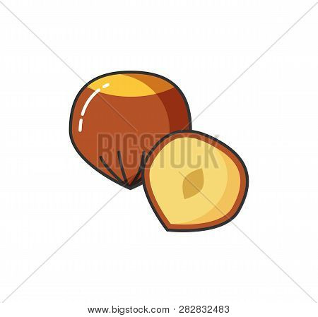 Food Icon Vector Nuts Whole And Half. Hazel Symbol Collection Nutmeg Sign. Vector
