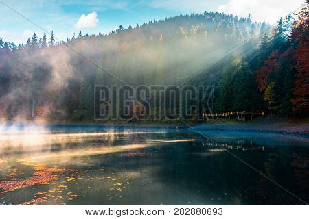 Lake Among The Pine Forest In Autumn. Beautiful Nature Scenery In Mountains. Foggy Environment Conce