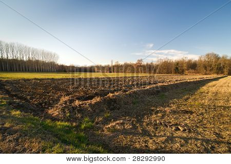 plowed field countryside