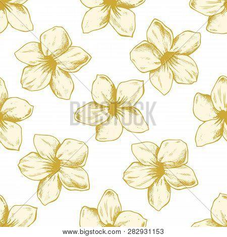 Seamless Pattern With Hand Drawn Pastel Allamanda, Vriesea