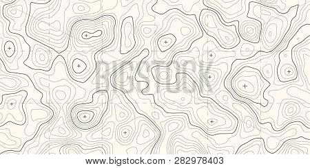 Geographic Topographic Map Grid. Topography Map Background. Vector Banner.