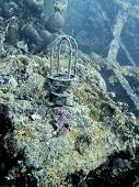 Lantern sits on coral crusted deck of shipwreck underwater in Palau poster