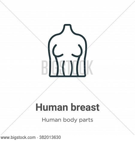 Human breast icon isolated on white background from human body parts collection. Human breast icon t