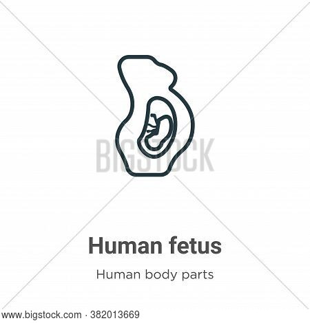 Human Fetus Icon From Human Body Parts Collection Isolated On White Background.