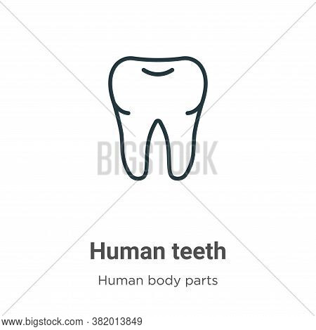 Human teeth icon isolated on white background from human body parts collection. Human teeth icon tre