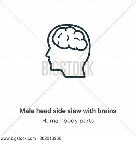 Male head side view with brains icon isolated on white background from human body parts collection.