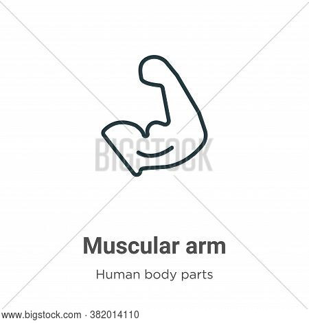 Muscular arm icon isolated on white background from human body parts collection. Muscular arm icon t