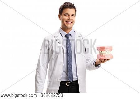 Young male dentist holding a jaw model isolated on white background