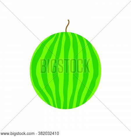 The Whole Watermelon. Striped Light And Dark Green Rind. Vector Illustration.