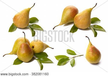 Set Fresh Pears With Green Leaf On White Background